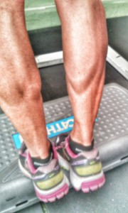 Calves as strong as an Ox
